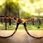 eye glasses on table with forest in the background